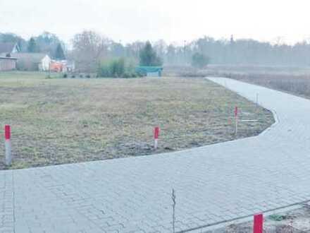 Baugrundstücke in der Natur suchen neue Eigentümer!