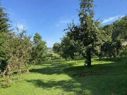Tolles Wochenendgrundstück in sonniger Lage mit Hütte und vielen Obstbäumen