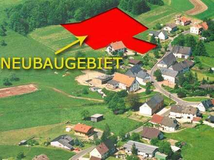 Baugrundstück in der Nationalparkgemeinde Meckenbach Naturpark Saar-Hunsrück
