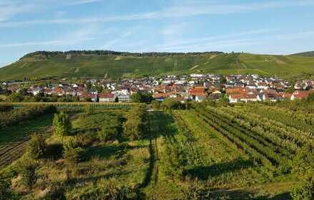 Erstbezug nach Sanierung: möbliertes 1,5-Zimmer-Wohnung mit Einbauküche und Balkon in Weinstadt
