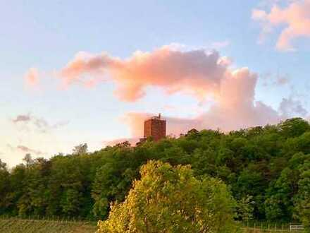Traumhaftes Grundstück mit Turmbergblick