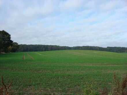 ca. 70 ha arrondierte Landwirtschaftsfläche im Mecklenburg!