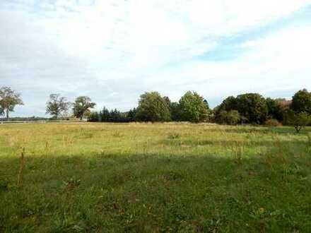 Dr. Lehner Immobilien NB -  Bauland für 2 große Grundstücke vor der Insel Usedom