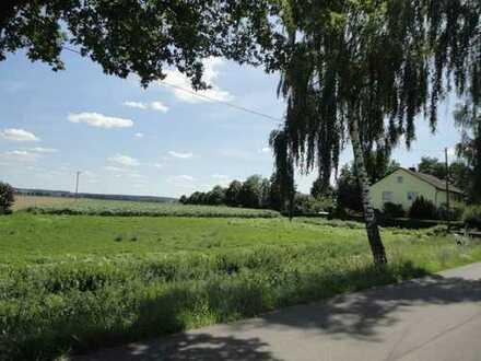 Acker in Karlshuld Nähe Ortsstraße