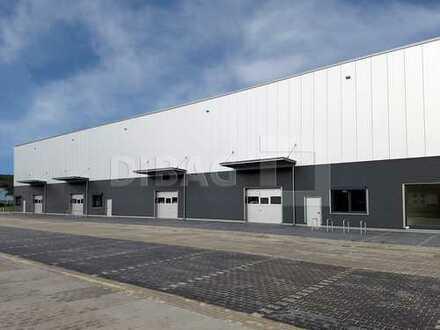 NEUBAU GEWERBEHOF ca. 800 m² mit ebenerdiger hofseitiger Andienung Teilfläche Hallenfläche A10