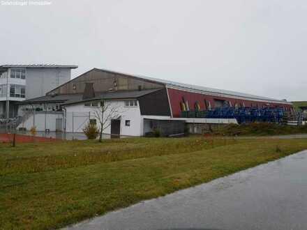 Großzügige Lagerhalle in Mittelbiberach zu vermieten