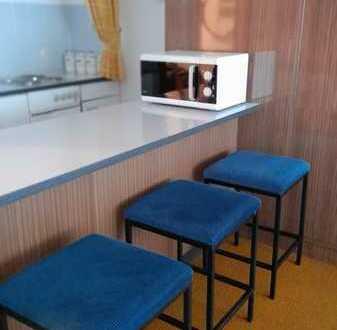 Gepflegte vollmöblierte 1-Zi.Wohnung mit Balkon und Einbauküche im Kniebis