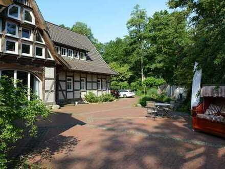 Modernisierte 3-Zimmer-Dachgeschosswohnung mit Balkon und EBK in Wedemark-Bissendorf Wietze