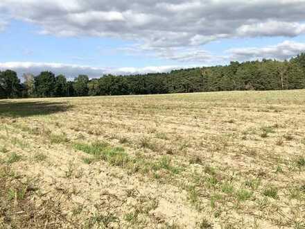 Sonniges, gepflegtes Ackerland 5.004 m² für SOFORTIGE NUTZUNG