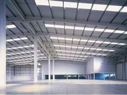 """BAUMÜLLER & CO."" - ca. 4.000 m² - Hallen-/ Produktionsfläche"