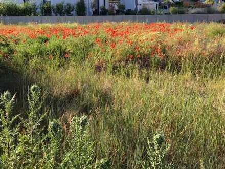 ROT blüht der Mohn*in diesem sonnigen Baugebiet gibt es noch einige sehr schön gelegene Grundstücke