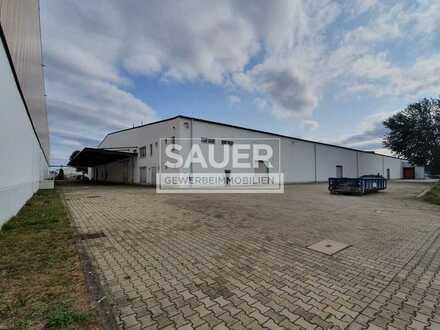 2.221 m² ebenerdige Lagerhallen zzgl. 116 m² Büro/Sozialtrakt *1571*