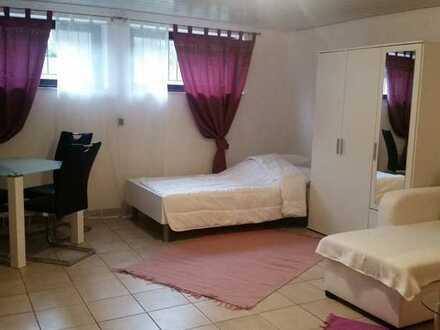 Gepflegtes, möbliertes Zimmer mit eigener Dusche im Keller eines Hauses in Frankenthal