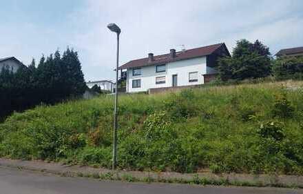 Gepflegtes 2-3 Familienhaus mit Bauplatz oder Fläche für Handwerksbetrieb!