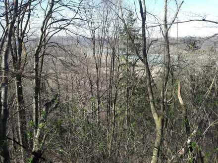 Für Brennholzmacher knappes Tagwerk Laubwald, Nähe Stadt Wasserburg am Inn