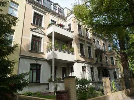 Zwei Wohnungen im Herzen des Paulusviertels