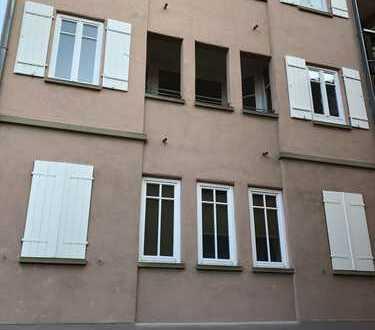 Helle, neu renovierte 2-Zimmer-Wohnung mit Terrasse und Loggia in Gundelsheim