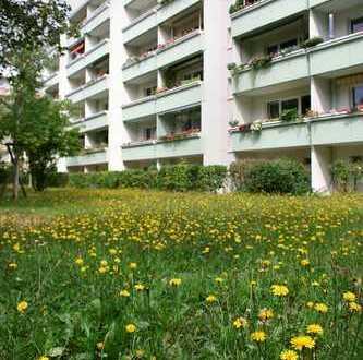 Umfassend modernisierte Wohnung mit Einbauküche, Balkon, Parkettboden und Waschtrockner