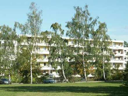Bild_Preiswerte 2-Raum Wohnung mit Bilck ins Grüne