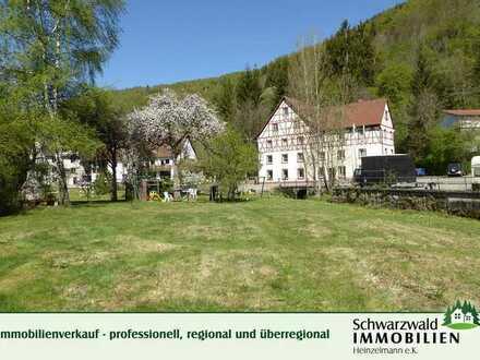 Immobilienrarität: Gasthof mit ehemaliger Mühle auf 5193 m² großem Grundstück