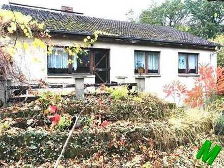 + Maklerhaus Stegemann + Einfamilienhaus in der Feldberger Seenlandschaft