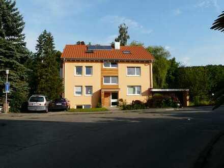 Gemütliche Einzimmer-Dachgeschosswohnung in Meersburg