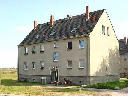 kleine 1 Zimmer Wohnung in Hardenbeck