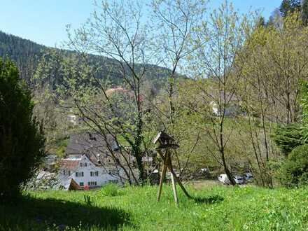 Modernisierte und gepflegte 2-Zimmer-Wohnung mit sonniger Terrasse in Bad Teinach-Zavelstein
