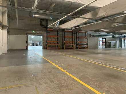 4.500 m² Hallenfläche | 975 m² Büro-/ Sozialflächen | komplett umzäuntes Gelände | RUHR REAL