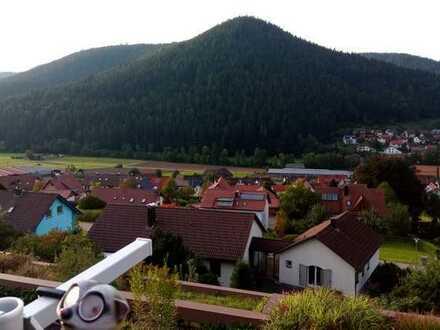 Schöne 1-Zimmer-Wohnung in Roßhaldeweg, Baiersbronn