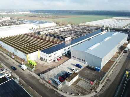 Bruchsal, provisionsfrei. hochwertige Hallen/Büroflächen ca. 2000 m², teilbar ab 500 m²