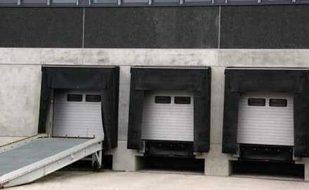 """BAUMÜLLER & CO."" - kurzfristig - ca. 6.000 m² Hallenfläche"