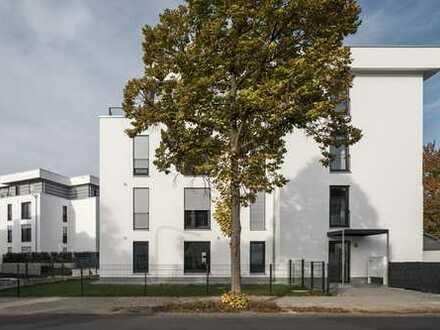 Schöne, geräumige vier Zimmer Penthouse-Wohnung in Roßdorf (Kreis Darmstadt-Dieburg)