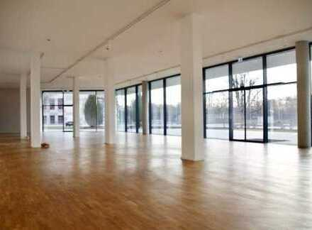 Repräsentative Verkaufsfläche mit Lager, Büro und Werkstatt (Ettlingen)