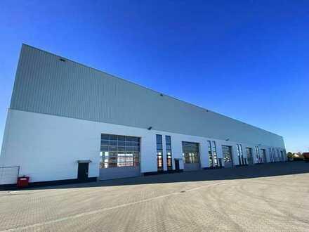 Halle für Produktion und Lager mit Freifläche / 2.671m² / 40t. Kran