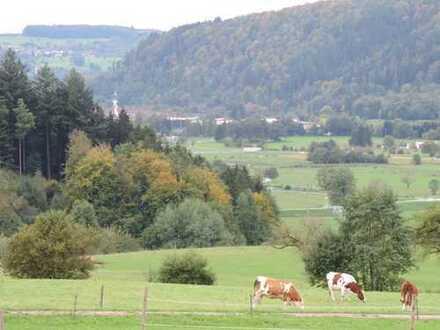 Baugrundstück (auch teilbar) im Neubaugebiet Weidacker, Raitbach