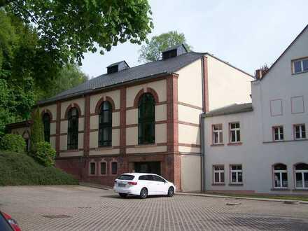 Geräumige, ruhige 1-Zimmer-Wohnung in Neukirchen/Erzgebirge