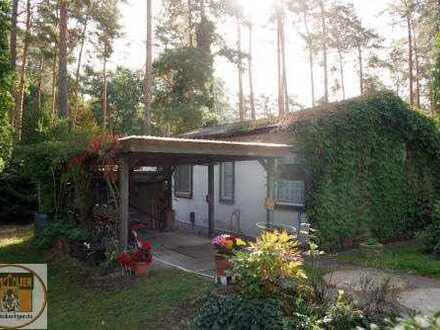 Erholung im Bungalow in Bernsdorf