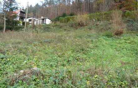 ErschlossenesBaugrundstückinruhigerAnliegerstraßeam Waldrand