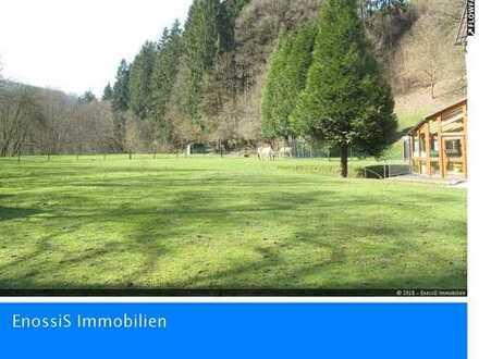 Gepflegtes, sehr großes Anwesen mit 2 Wohnhäusern in ruhiger idyllischer Landschaft