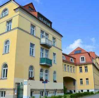 Wohnen am Elbufer...großzügige 1 Zimmer-Dachgeschosswohnung mit Nebengelass