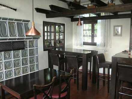 Alzenau - kuscheliges Restaurant mit Kamin und Innenhof (Biergarten)