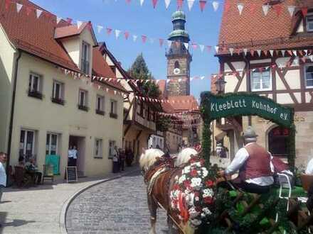 Schöne & modernisierte Gewerbe-Immobilie am Laufer Marktplatz - Ideal als Büro, Laden, Café etc.