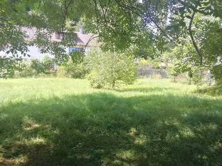 Bebaubares Grundstück in Neckargemünd