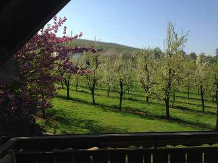 Herrlicher Blick auf Obstgärten und Weinberge