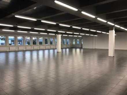Sanierte Halle/Ausstellungsfläche zu vermieten