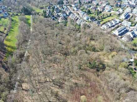 Für Naturfreunde: ca. 6,5 ha grosses Waldgebiet in Essen-Burgaltendorf