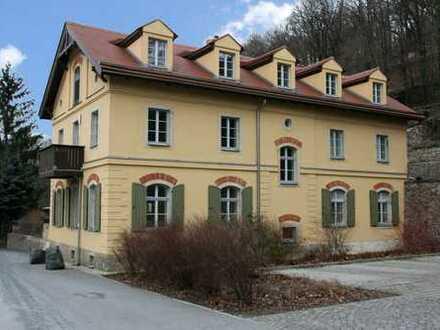 Residieren im Königlichen Park Wachwitz - exklusive 2-Zimmer-Dachgeschoss-Wohnung mit Balkon