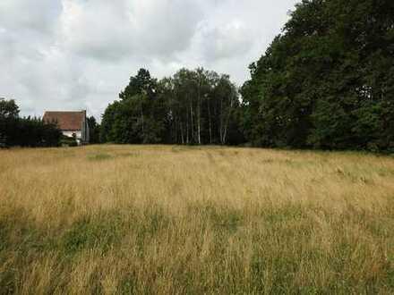 Grundstück 4358 m² _zu verkaufen