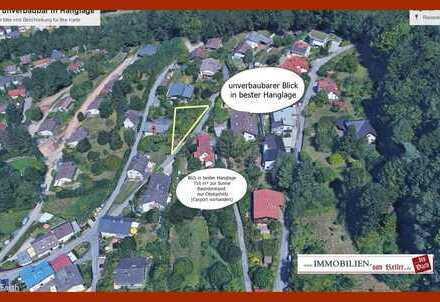 BGS 716 m² exklusive Hanglage, unverbaubarer Talblick über Wilhelmsfeld (KP: REDUZIERT)